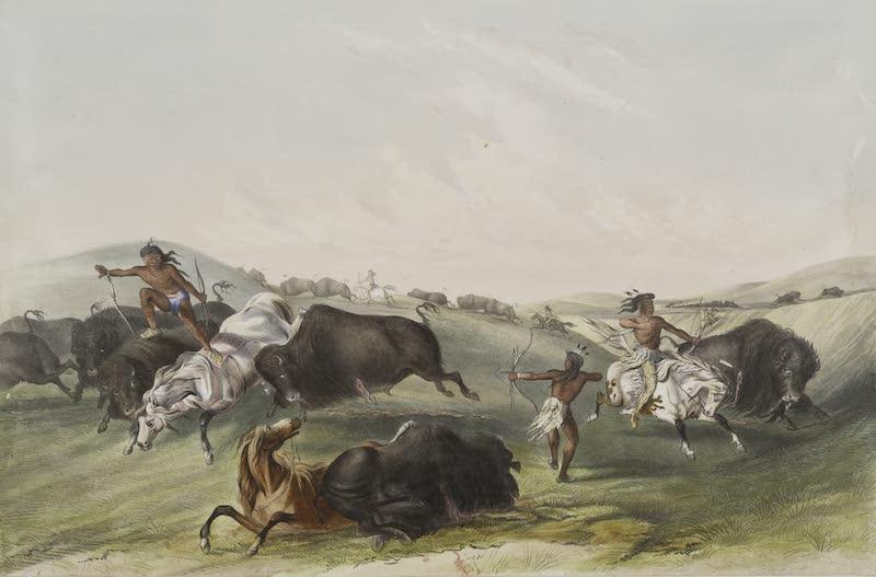 Catlin's Indian Portfolio - Buffalo Hunt Chase II (1844)