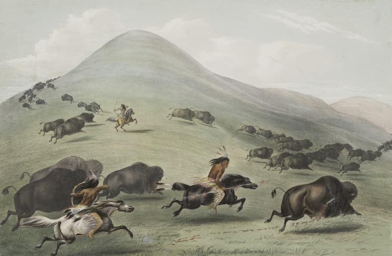 Catlin's Indian Portfolio - Buffalo Hunt Chase III (1844)