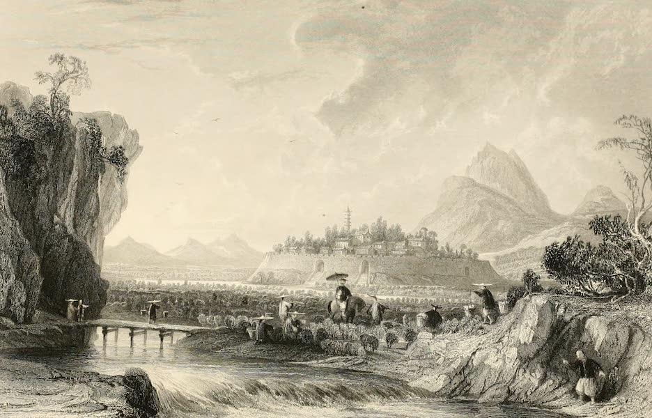 China in a Series of Views Vol. 2 - Cotton Plantations at Ning-po (1843)