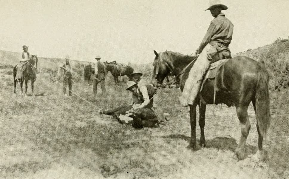 Colorado, The Queen Jewel of the Rockies - On the Range (1918)