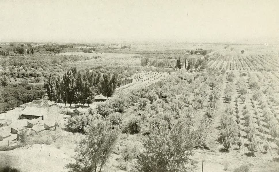 Colorado, The Queen Jewel of the Rockies - Grand Valley Farms (1918)