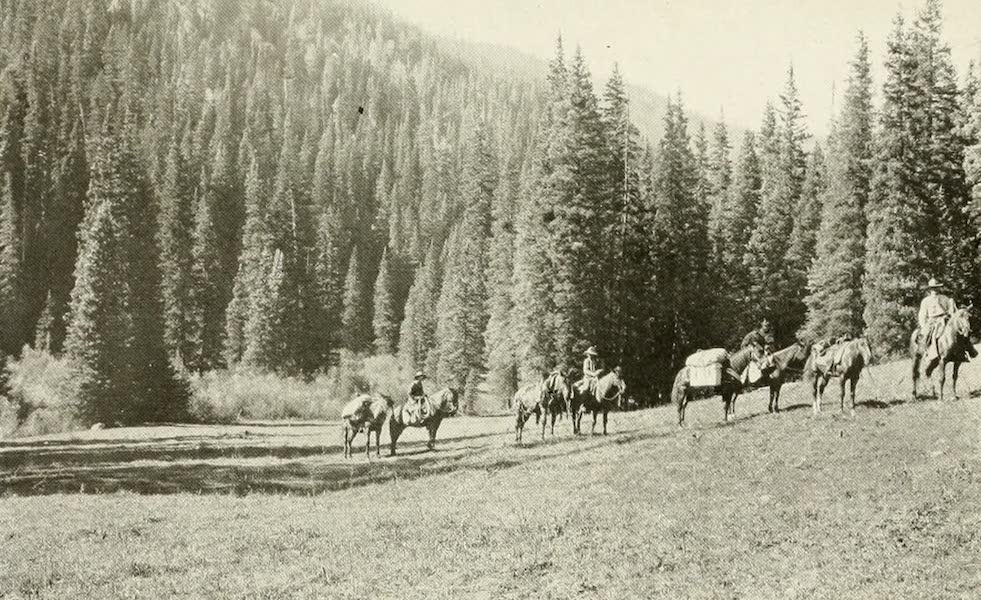 Colorado, The Queen Jewel of the Rockies - Touring in the Uncompahgre Forests (1918)