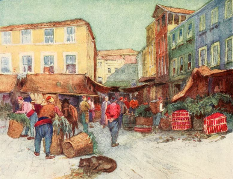 Constantinople Painted and Described - Fruit-Market, Stamboul (1906)