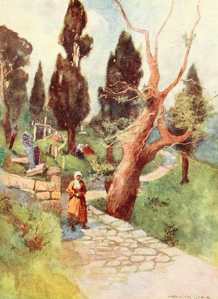 Constantinople Painted and Described - Cemetery at Eyoub (1906)