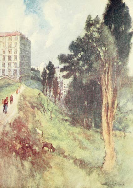 Constantinople Painted and Described - View from an old Cemetery (1906)