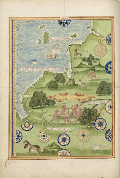 Cosmographie Universelle - Terre australe I (1555)
