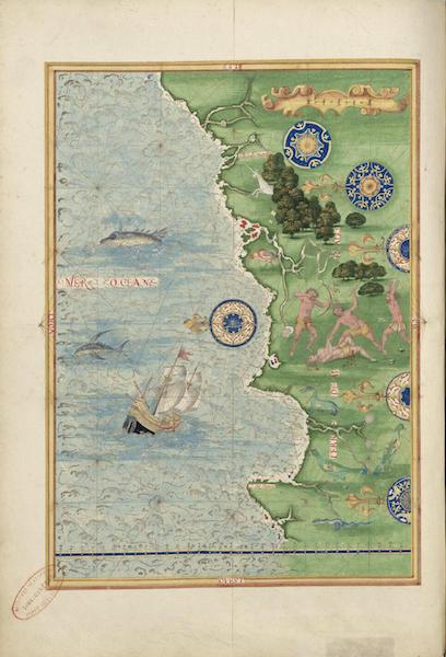 Cosmographie Universelle - Terre australe V (1555)