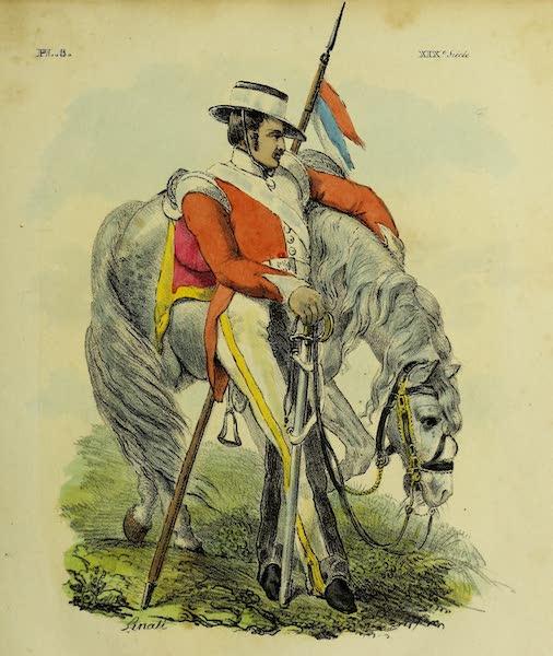 Costumes Civils, Militaires et Religieux du Mexique - Dragon. Troupe de Ligne (1828)