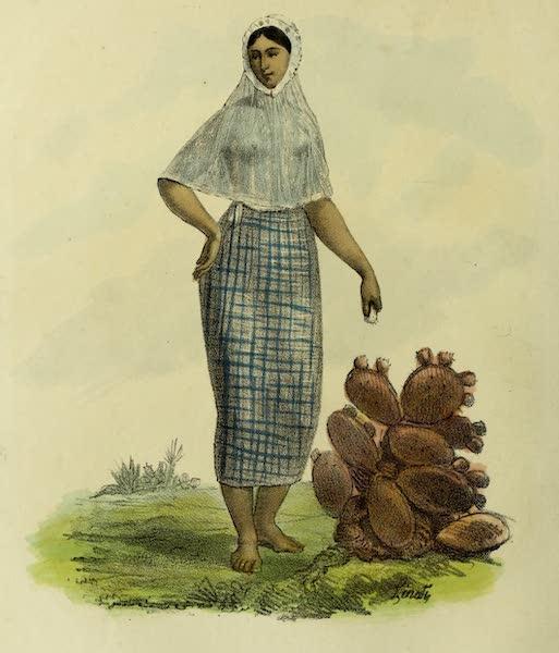 Costumes Civils, Militaires et Religieux du Mexique - Jeune femme de Tehuantepee (1828)