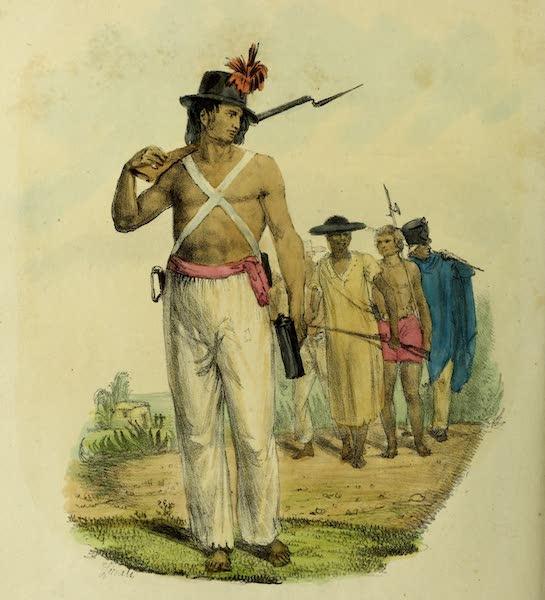 Costumes Civils, Militaires et Religieux du Mexique - Garde civique d'Alvarado, descendant (1828)