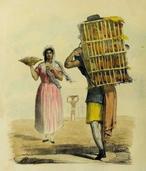 Costumes Civils, Militaires et Religieux du Mexique - Marchand de Volailles / Marchand de Graisses / Marchande de Bonbons (1828)