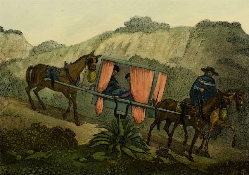 Costumes Civils, Militaires et Religieux du Mexique - (Attelage) Litiere de Vera Cruz a Mexico (1828)