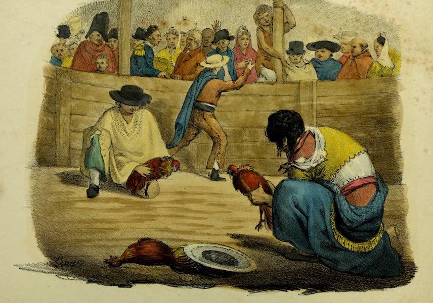 Costumes Civils, Militaires et Religieux du Mexique - Pelea de Gallos. Combat de Coqs (1828)