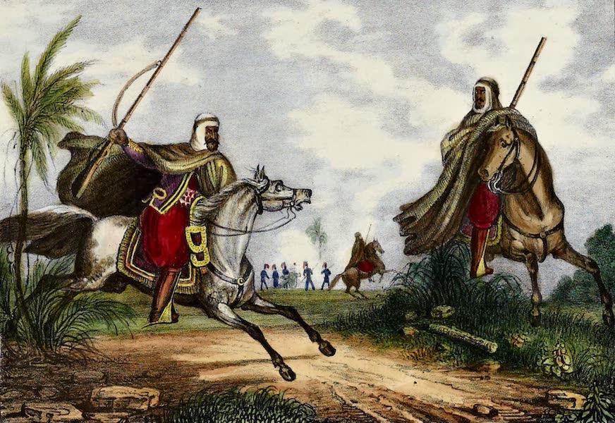 Cavaliers Arabs