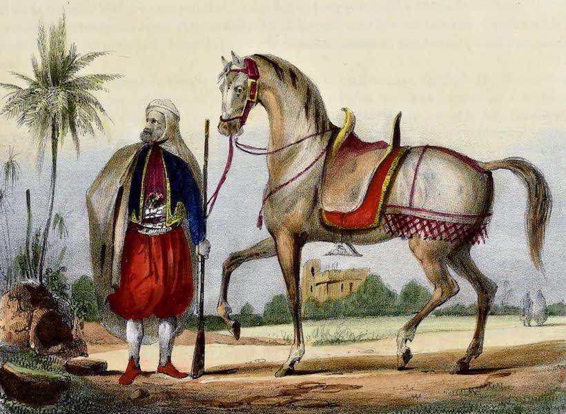 Costumes, Moeurs et Usages des Algeriens - Coulouglis Costume Elegant (1837)