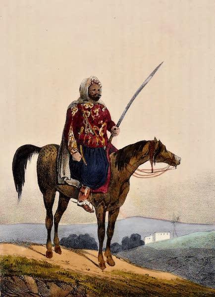 Lieutenant Colonel Marey, Commandant des Spahis