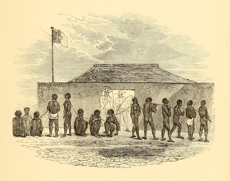 Dahomey and the Dahomans - The Slave Chain (1851)