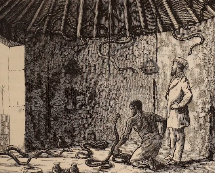Dahomey As It Is - The Snake Temple (1874)