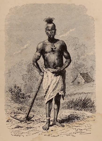 Dahomey As It Is - A Dahoman Labourer (1874)