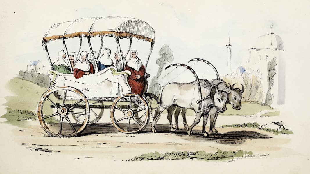 Damascus and Palmyra Vol. 1 - Arabat, or Turkish Ladies Carriage (1838)