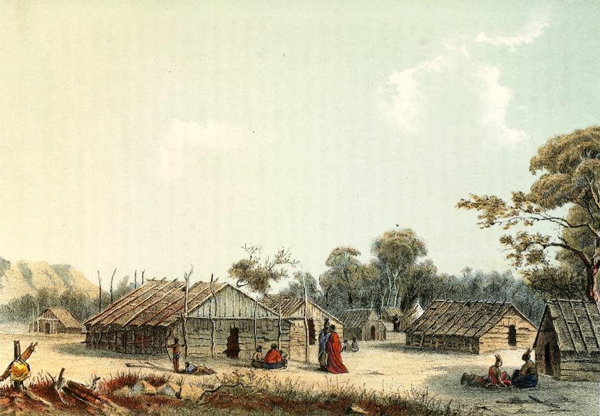 Das Illustrirte Mississippithal - Medizinflaschendorf (1857)
