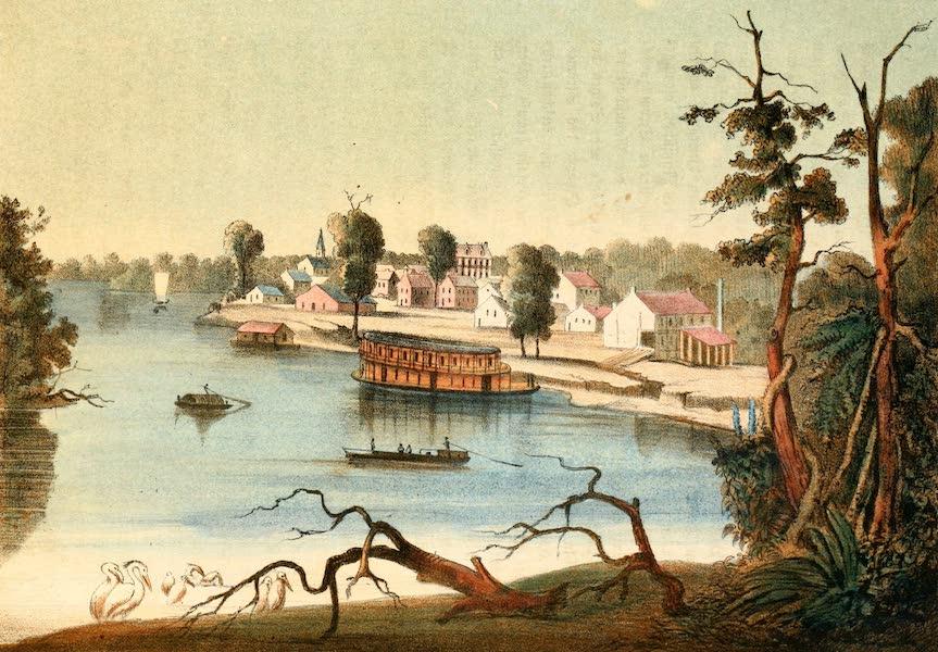 Das Illustrirte Mississippithal - New Madrid, Missouri (1857)