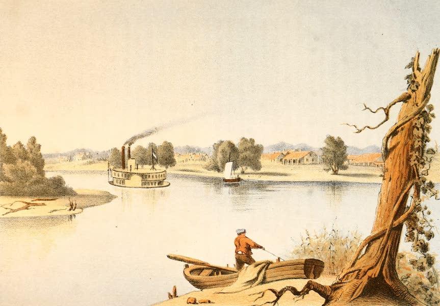 Das Illustrirte Mississippithal - General Taylor's Plantation (1857)
