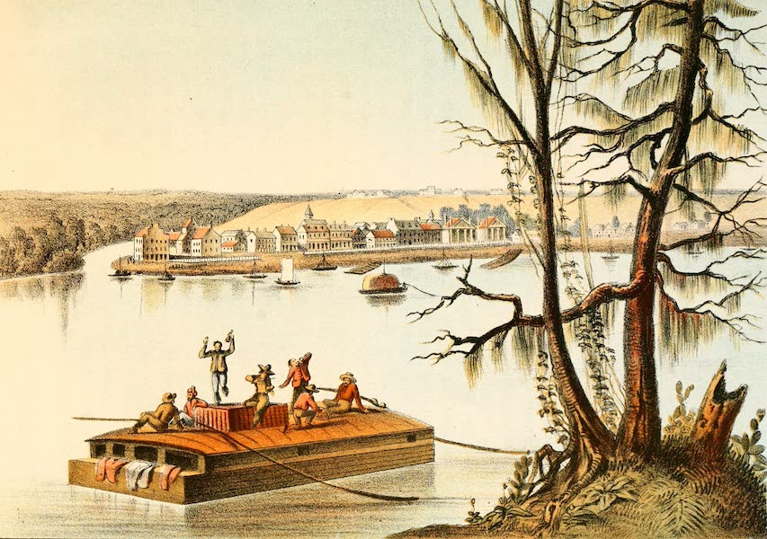 Das Illustrirte Mississippithal - Bayon Sucra, Luisiana (1857)