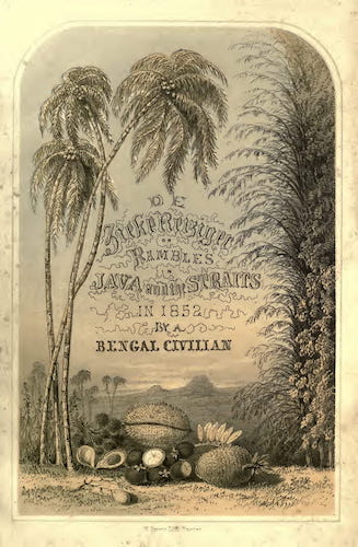 Aquatint & Lithography - De Zieke Reiziger, or, Rambles in Java and the Straits