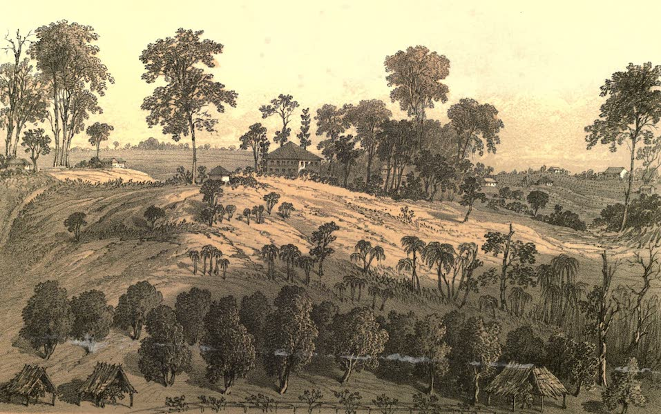 De Zieke Reiziger, or, Rambles in Java and the Straits - A sketch from Cummings Bukit, Singapore (1853)