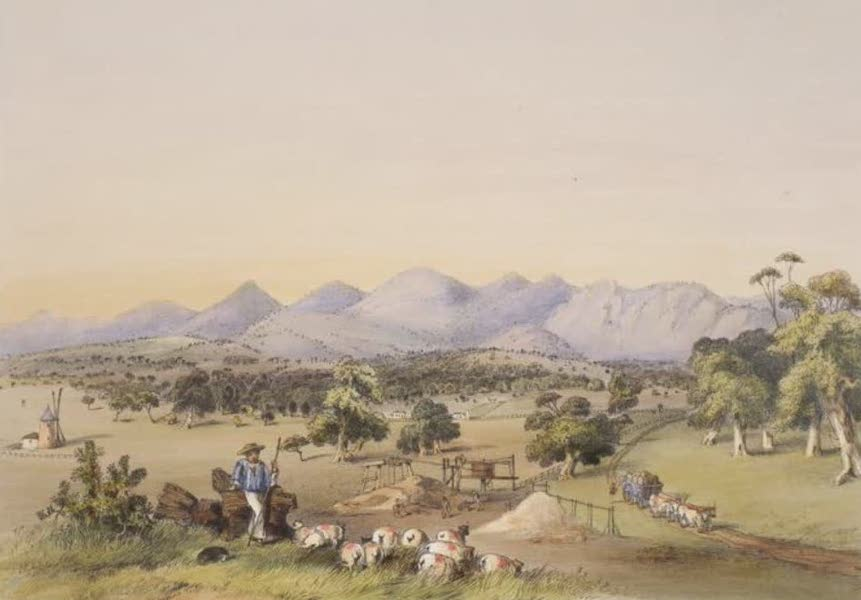Description of the Barossa Range and its Neighbourhood in South Australia - Lynedoch Valley looking towards the Barossa Range (1849)