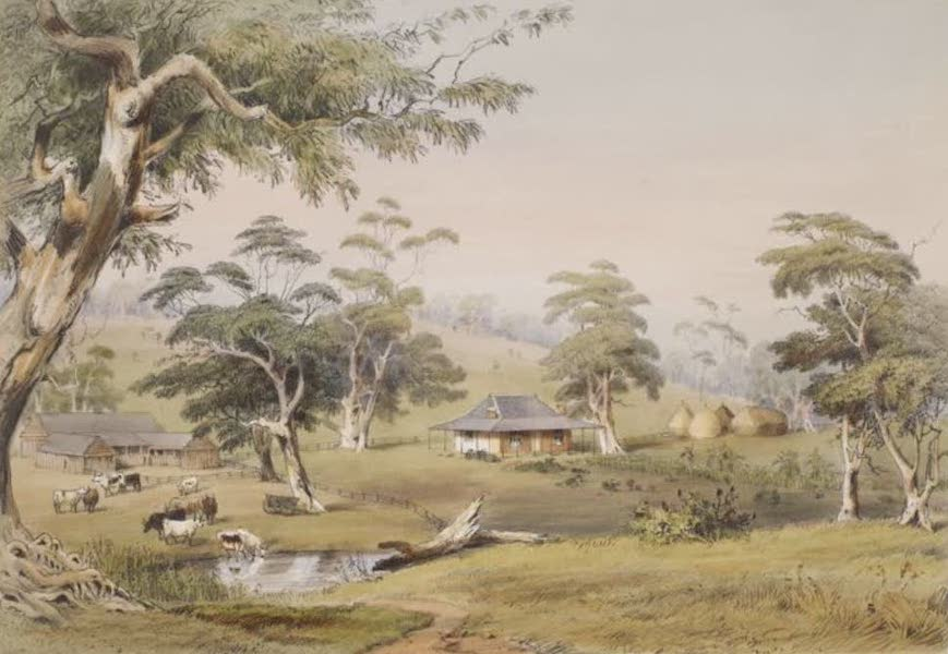 Description of the Barossa Range and its Neighbourhood in South Australia - Terraworta on the Gawler River (1849)