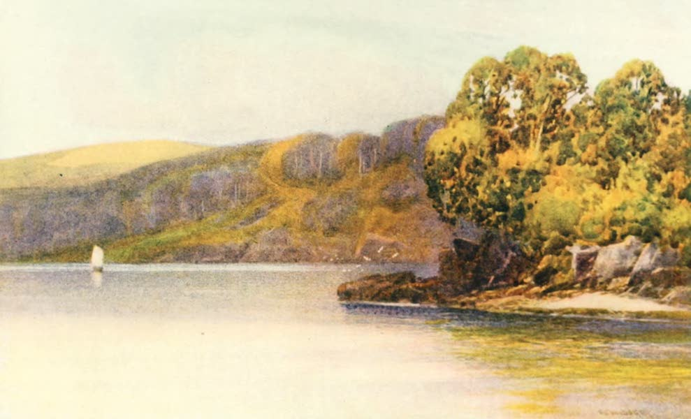 Devon : Its Moorlands, Streams, & Coasts - Sharpham Woods : River Dart (1913)