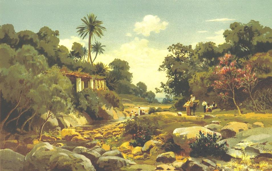 Die Riviera: Wanderziele und Winterasyle - Vai di Sasso bei Bordighera (1884)