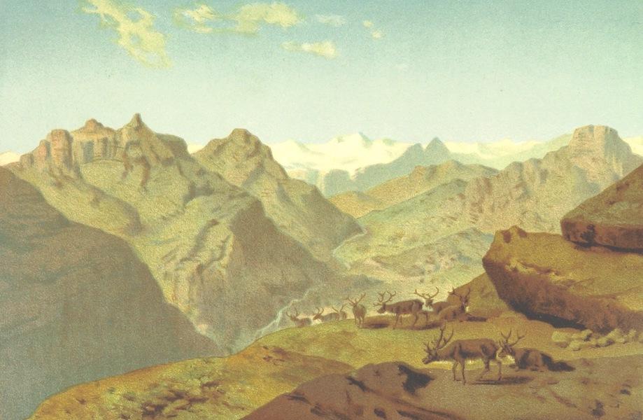 Die zweite Deutsche Nordpolarfahrt Vol. 1 - Konigin-Augusta-Thal (1873)