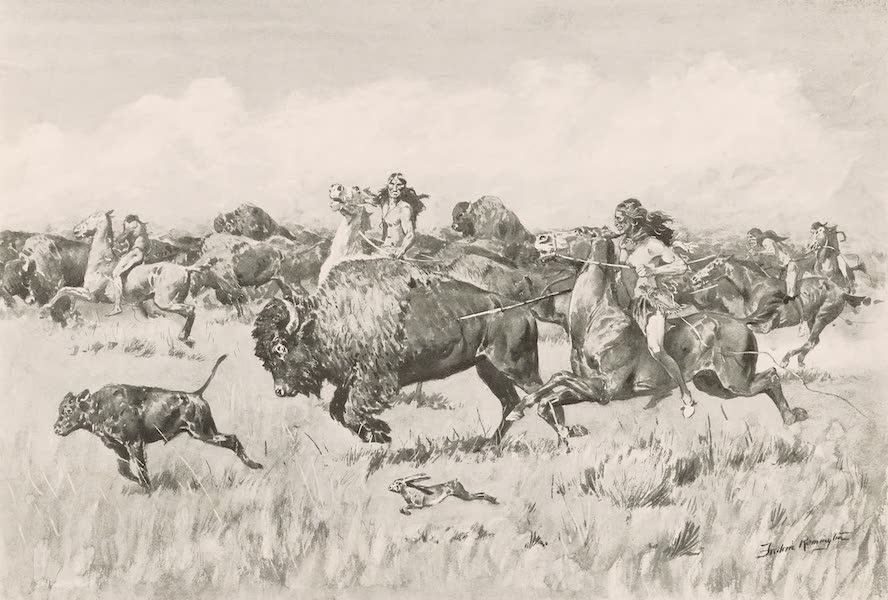 Drawings by Frederic Remington - Her Calf (1897)