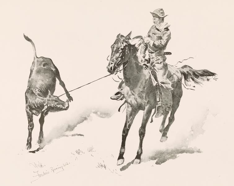 Drawings by Frederic Remington - Cowboy Leading Calf (1897)