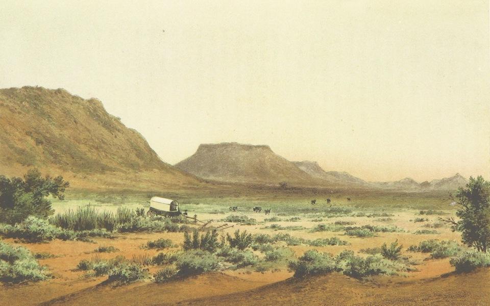 Drei Jahre in Sud-Afrika - Ansicht aus der Ostlinchen Provinz Cradock District (1868)