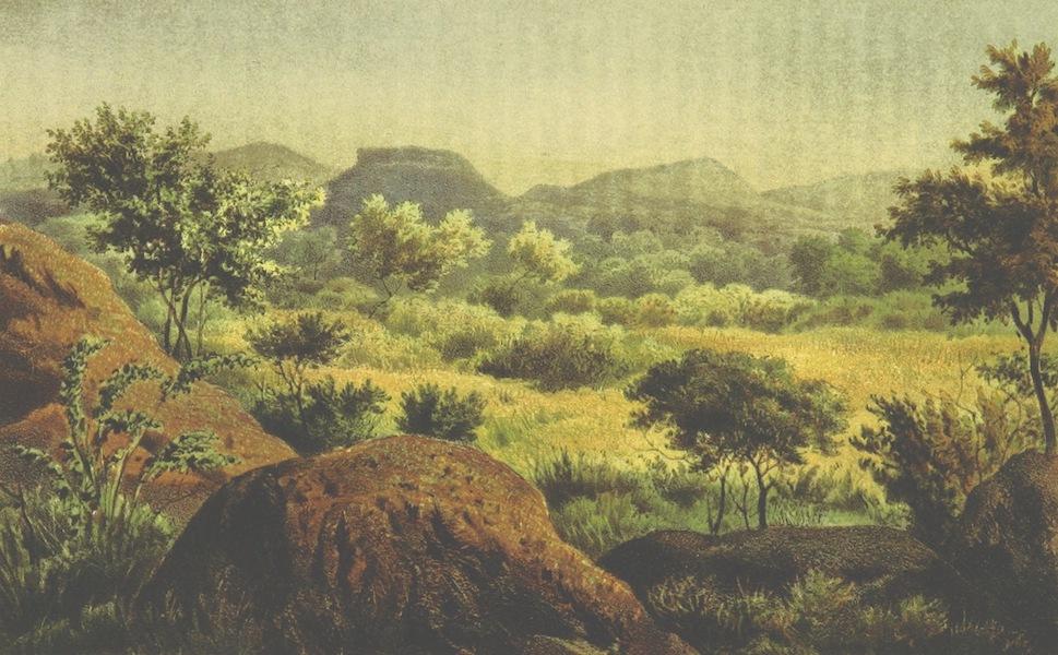 Drei Jahre in Sud-Afrika - Landscahft aus dem Bechuanalande Bakatla Gebiet (1868)