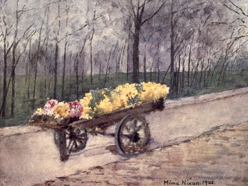 Dutch Bulbs and Gardens, Painted and Described - Bulb Time, Haarlem (1909)