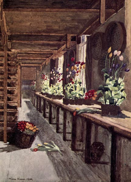 Dutch Bulbs and Gardens, Painted and Described - A Bulb House (1909)