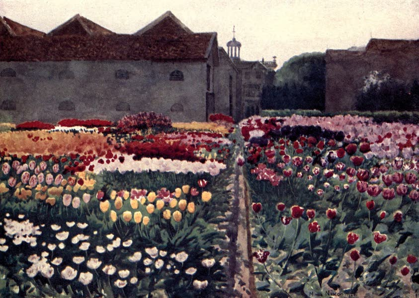 Dutch Bulbs and Gardens, Painted and Described - A Bulb-Grower's Garden (1909)
