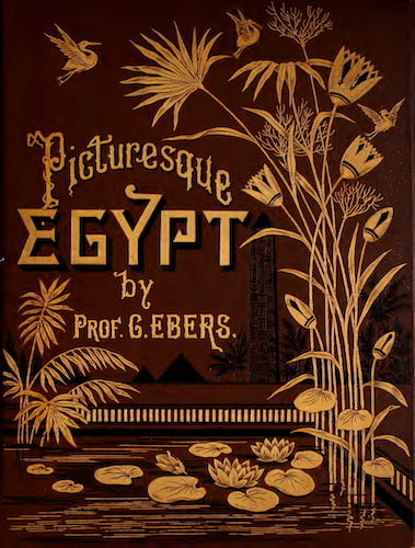Aquatint & Lithography - Egypt: Descriptive, Historical, and Picturesque Vol. 1