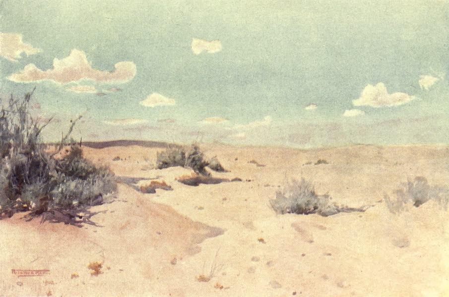 Egypt, Painted and Described - A Desert Study at Tel-el-Kebir (1902)