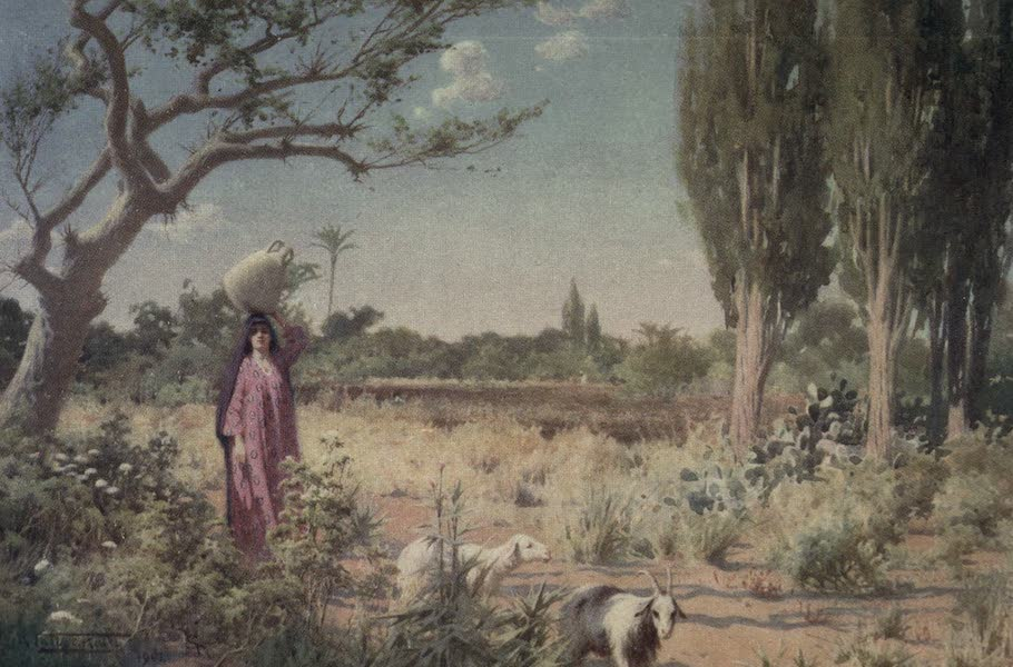 Egypt, Painted and Described - A Pastoral near Damietta (1902)