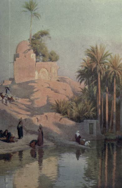 Egypt, Painted and Described - In the Oasis of Fayum (1902)