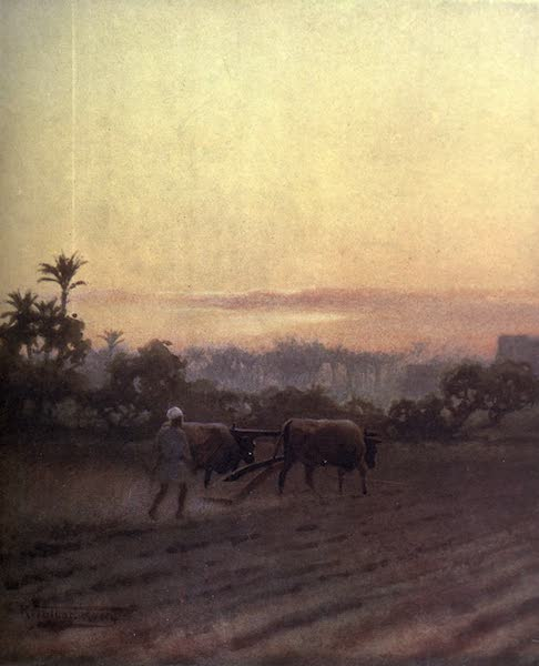Egypt, Painted and Described - Late Labour (1902)
