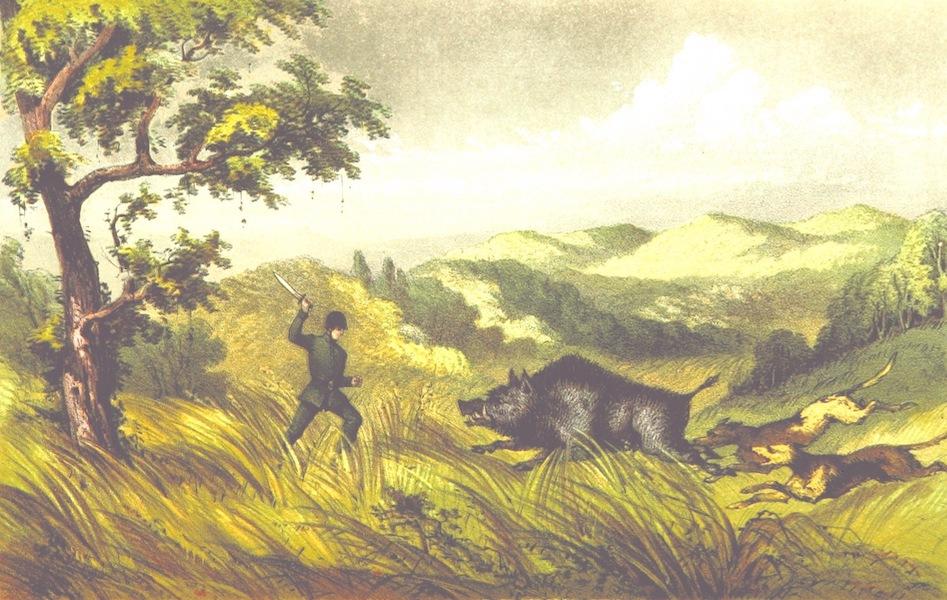 Eight Years' Wanderings in Ceylon - Close Quarters (1855)