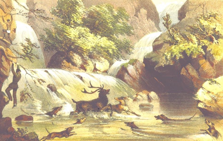 Eight Years' Wanderings in Ceylon - Phrenzy's Fall (1855)