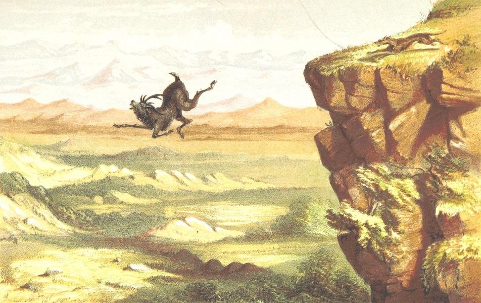 Eight Years' Wanderings in Ceylon - The Elk's Leap (1855)